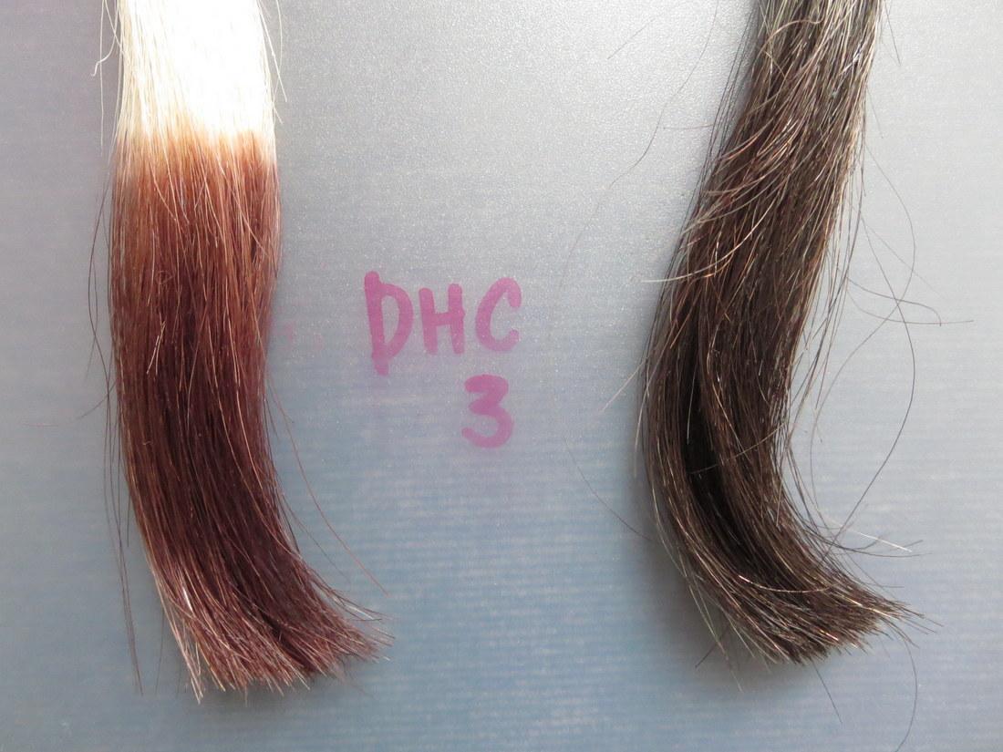 DHC Q10クイックカラートリートメント白髪用で染めてみました3回目
