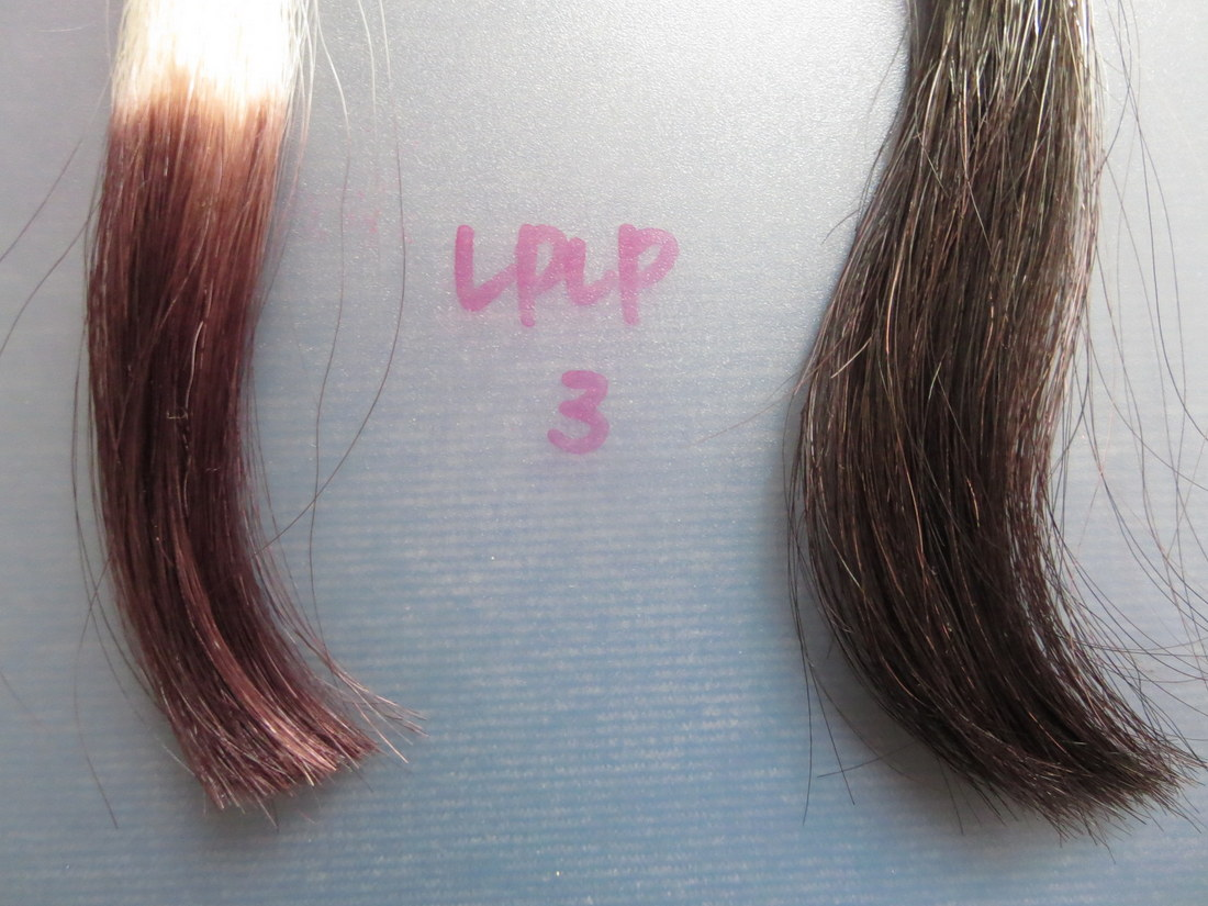 LPLP(ルプルプ)ヘアカラートリートメント3回目