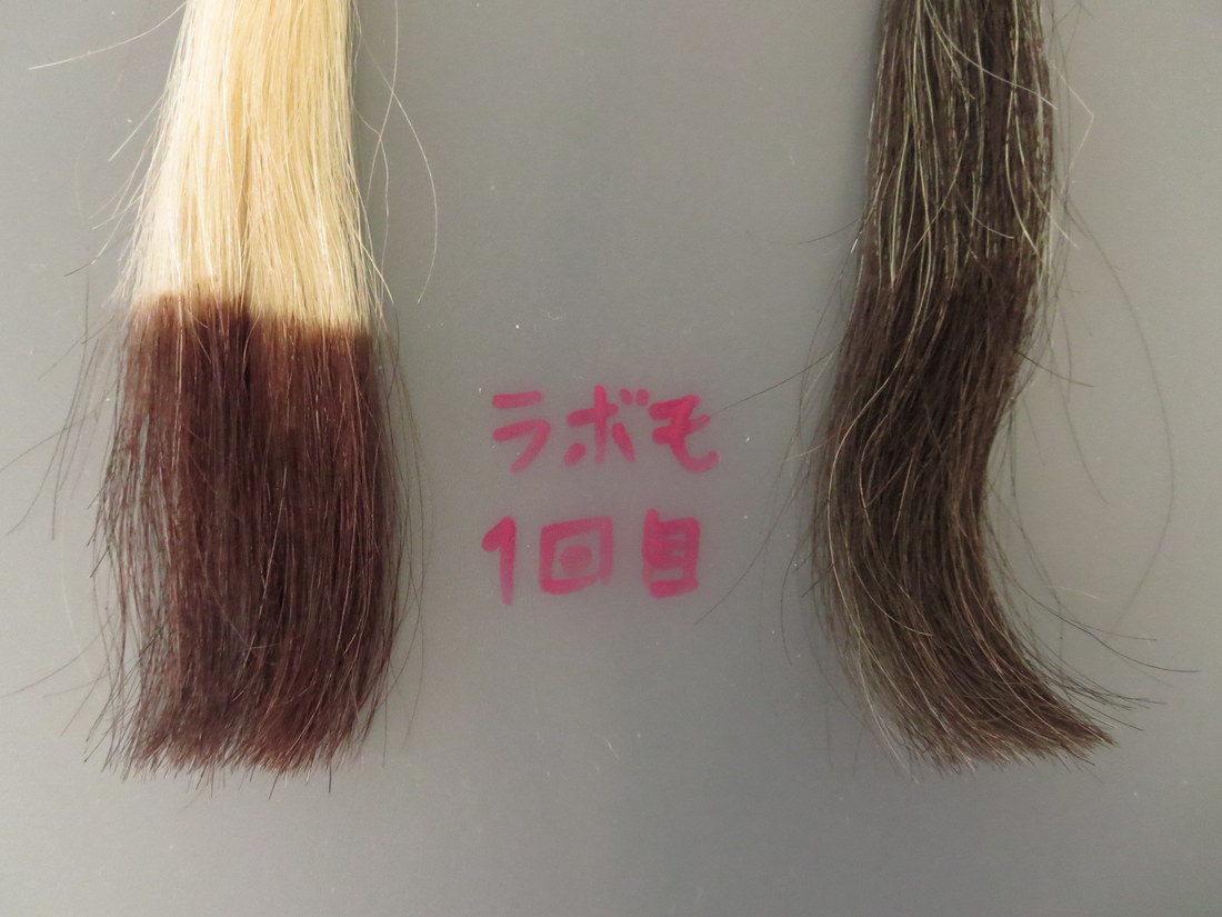 LABOMO(ラボモ)スカルプアロマ ヘアカラートリートメント 白髪染め実験 1回目