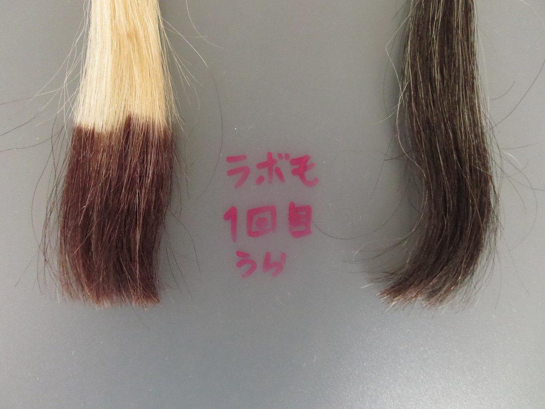 LABOMO(ラボモ)スカルプアロマ ヘアカラートリートメント白髪染め・髪の裏画像