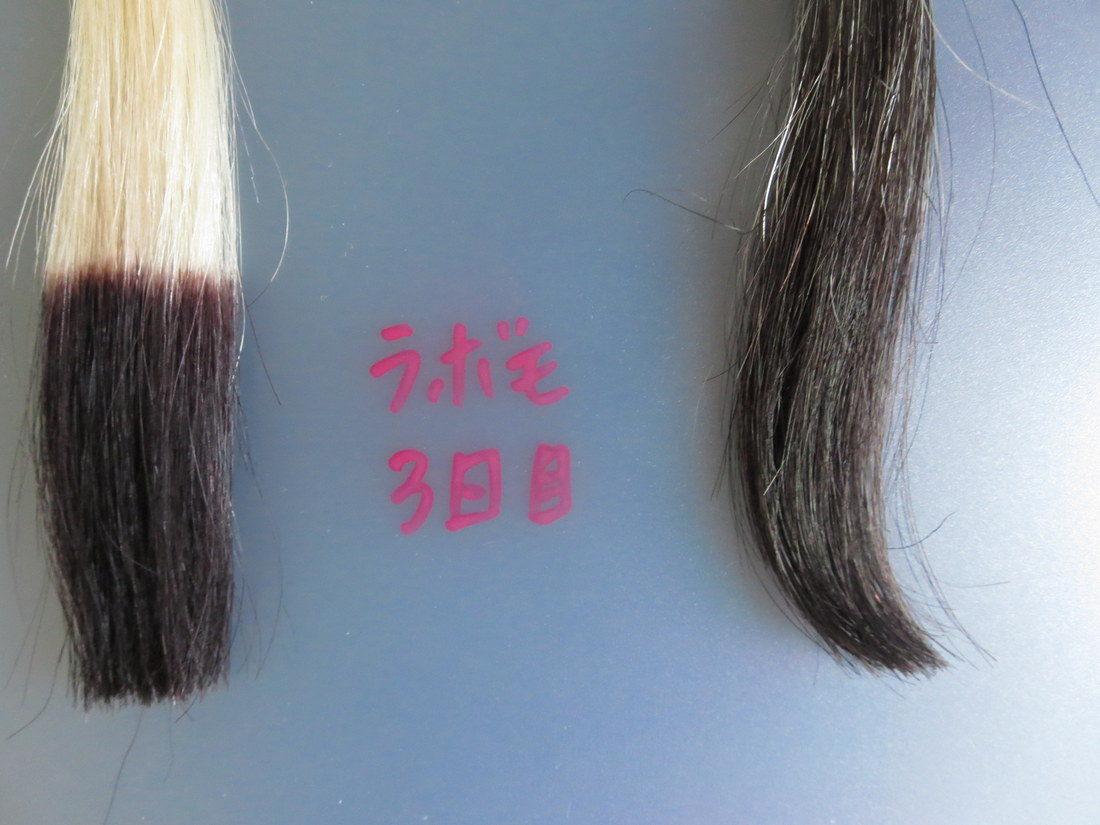 LABOMO(ラボモ)スカルプアロマ ヘアカラートリートメント・白髪染め・3回目比較画像