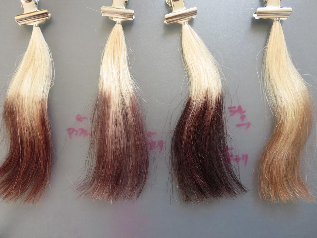1回で裏までしっかり染まる白髪染めヘアカラートリートメントはどれ?