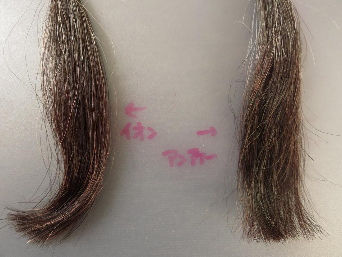 白髪30%で比較するとアンファーが浮かない