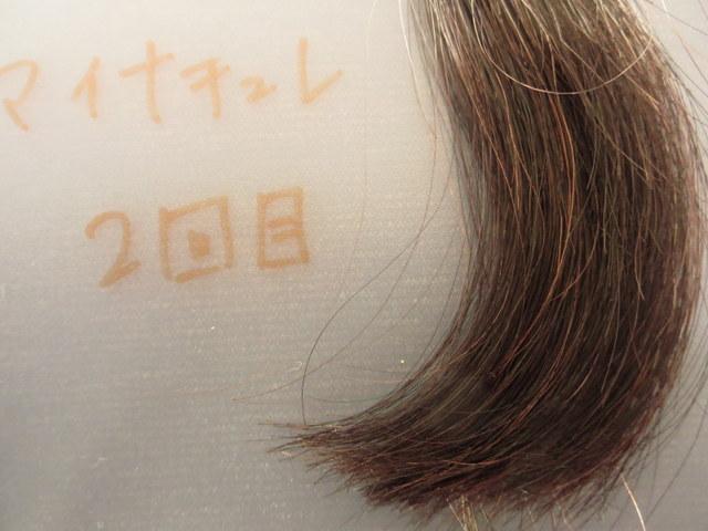 マイナチュレオールインワンカラートリートメント 白髪テスターで染めた2回目 白髪30%の髪をクローズアップ