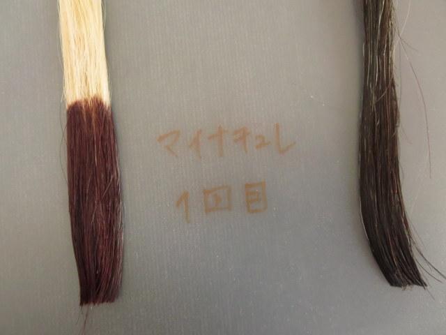マイナチュレヘアカラートリートメントで白髪テスターを染めてみました。1回目