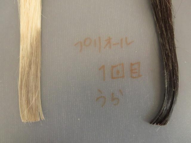 資生堂の白髪染めヘアカラーコンディショナー「プリオール」で白髪テスターを染めてみました。 裏側