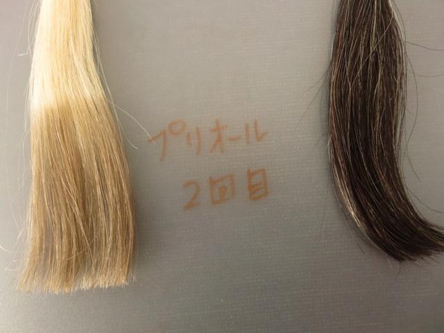 資生堂の白髪染めヘアカラーコンディショナー「プリオール」で白髪テスターを染めてみました。2回目