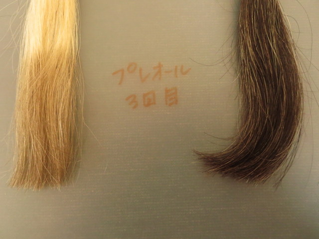 プリオール白髪テスターを染めてみました3回目