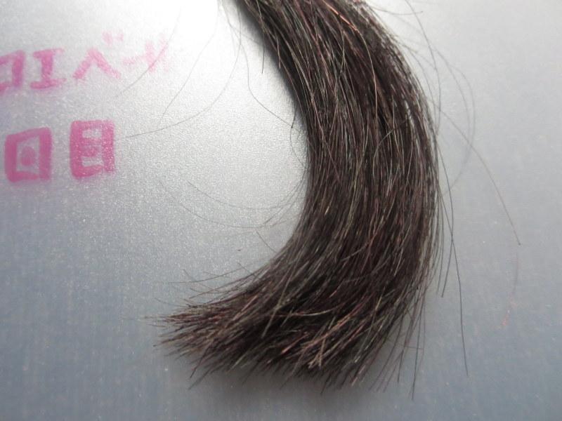 クロエベールで白髪染め2回目 白髪30%のほうはたまに染まってない箇所あり