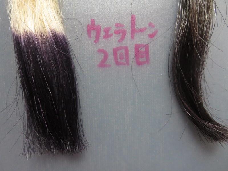 ウエラトーン ヘアカラートリートメントで実際に白髪テスターを染めてみました。2回目