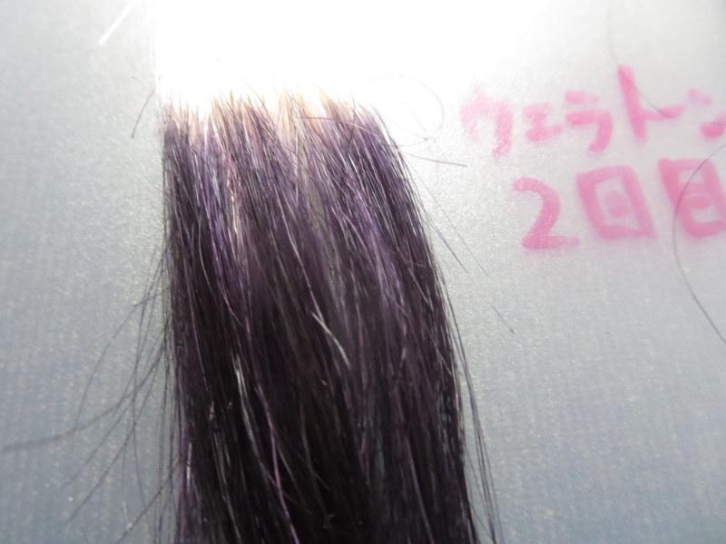 ウエラトーン ヘアカラートリートメントで実際に白髪テスターを染めてみました。2回目 白髪100%は紫色が目立つ